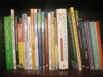 Image of books in bookcase.